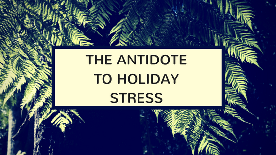 Evergreen trees at night with a block over them that says the antidote to holiday stress